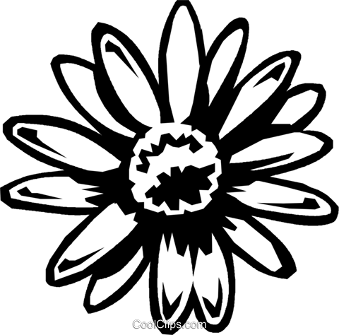 daisy Royalty Free Vector Clip Art illustration vc027448