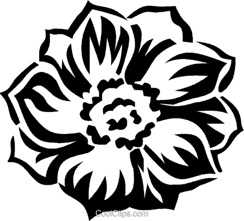 anemone Royalty Free Vector Clip Art illustration vc027451