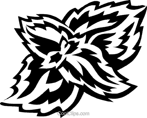 coleus Royalty Free Vector Clip Art illustration vc027562