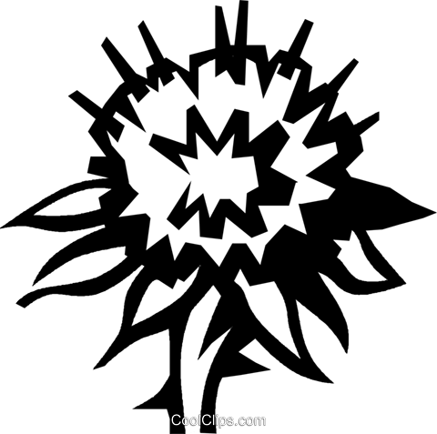thistle Royalty Free Vector Clip Art illustration vc027569