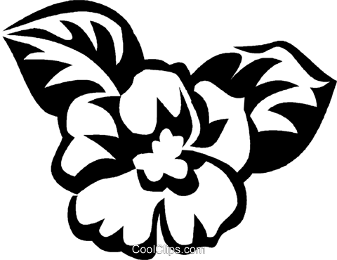 African violet Royalty Free Vector Clip Art illustration vc027574