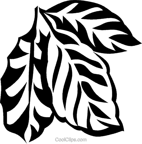 coffee plant Royalty Free Vector Clip Art illustration vc027576
