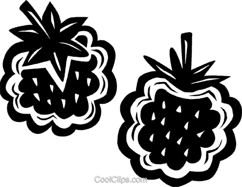 raspberries Royalty Free Vector Clip Art illustration vc027644