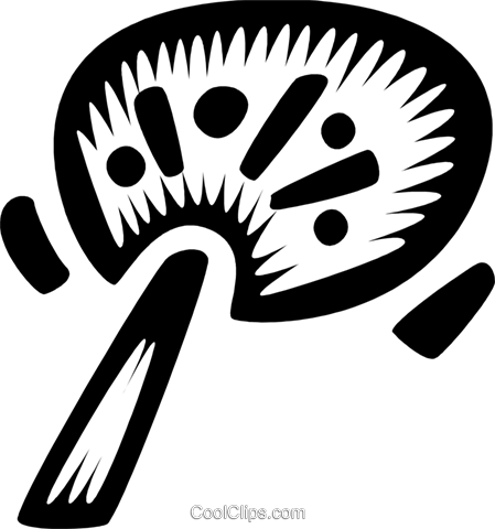 Japanese hand fans Royalty Free Vector Clip Art illustration vc028697