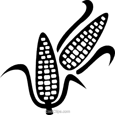 corn on the cob Royalty Free Vector Clip Art illustration vc028792