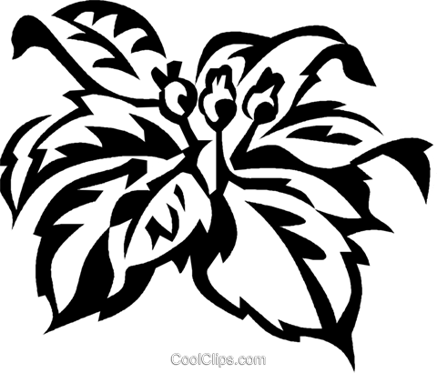 poinsettia Royalty Free Vector Clip Art illustration vc029342