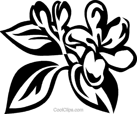 honeysuckle Royalty Free Vector Clip Art illustration vc029352