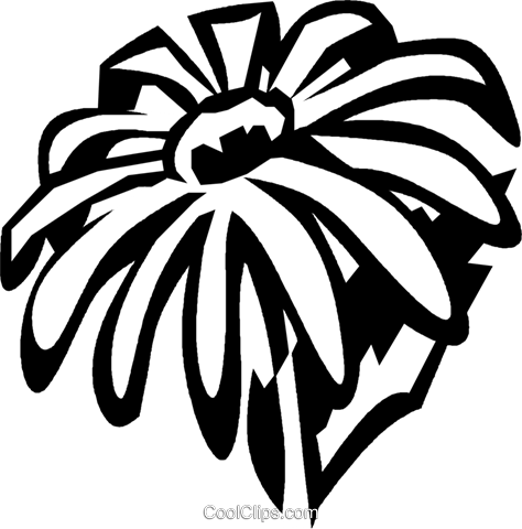 black-eyed Susan Royalty Free Vector Clip Art illustration vc029378