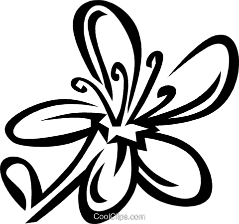 St. Johnswort Royalty Free Vector Clip Art illustration vc029500