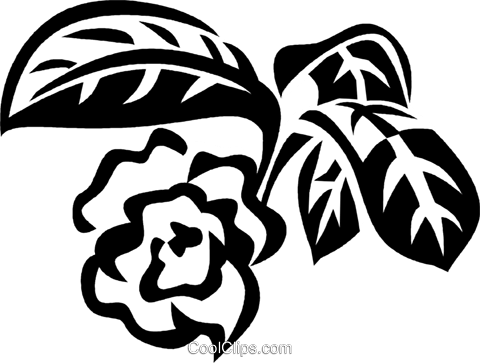 paw paw Royalty Free Vector Clip Art illustration vc029514