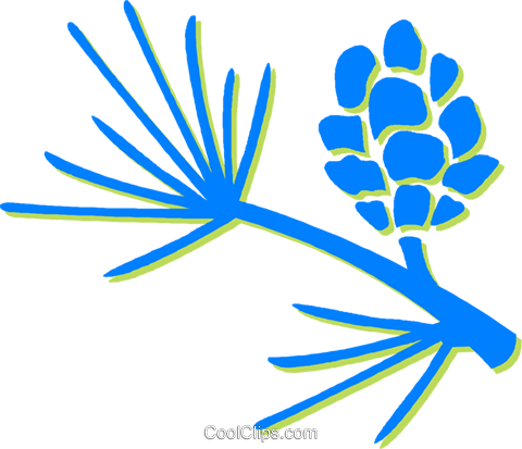 pine leaves and pinecone Royalty Free Vector Clip Art illustration vc030692