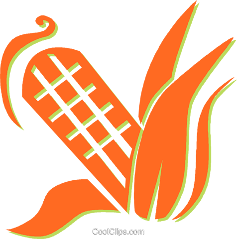 corn on the cob Royalty Free Vector Clip Art illustration vc030973