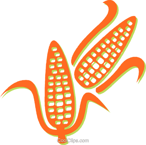 corn on the cob Royalty Free Vector Clip Art illustration vc031407