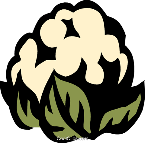 cauliflower Royalty Free Vector Clip Art illustration vc031953