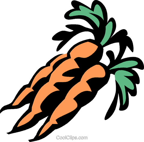 carrots Royalty Free Vector Clip Art illustration vc031957