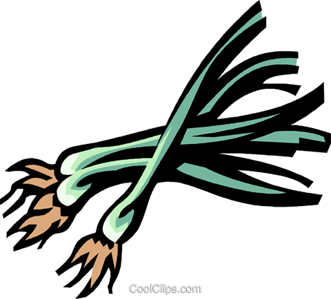 shallots Royalty Free Vector Clip Art illustration vc031959