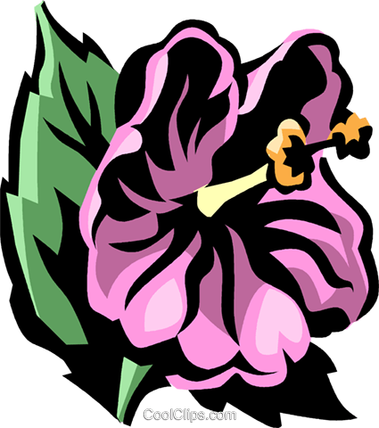 hibiscus Royalty Free Vector Clip Art illustration vc031995