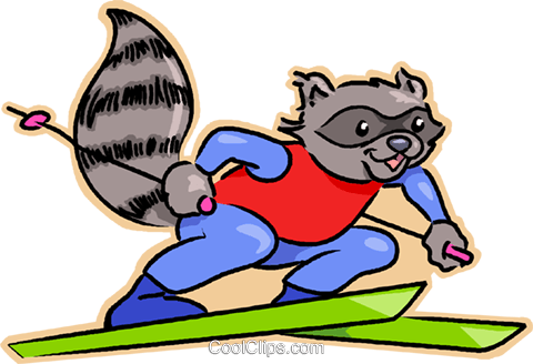 raccoon on downhill skis Royalty Free Vector Clip Art illustration vc032001