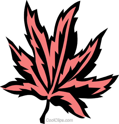 Japanese maple Royalty Free Vector Clip Art illustration vc032072