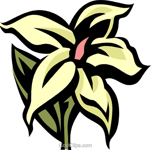 jasmine Royalty Free Vector Clip Art illustration vc032073