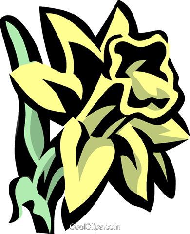 daffodil Royalty Free Vector Clip Art illustration vc032089