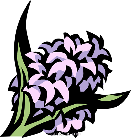 lilac Royalty Free Vector Clip Art illustration vc032092