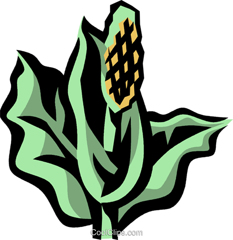 skunk cabbage Royalty Free Vector Clip Art illustration vc032099