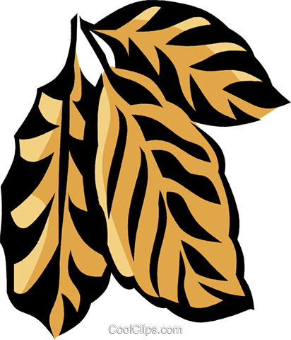 coffee plant Royalty Free Vector Clip Art illustration vc032111