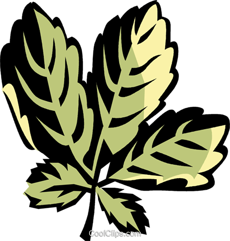 ginseng Royalty Free Vector Clip Art illustration vc032134