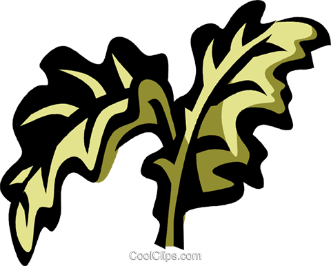 kale Royalty Free Vector Clip Art illustration vc032138