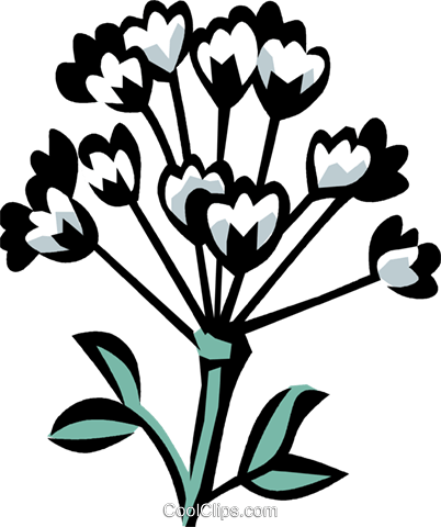 anise Royalty Free Vector Clip Art illustration vc032147