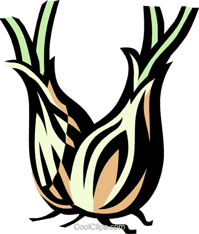 shallots Royalty Free Vector Clip Art illustration vc032154