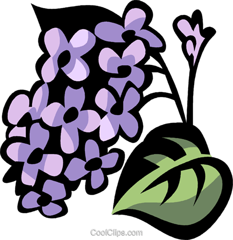 lilac Royalty Free Vector Clip Art illustration vc032176