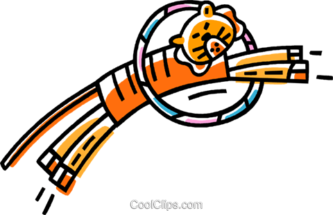tiger jumping through a hoop Royalty Free Vector Clip Art illustration vc033450