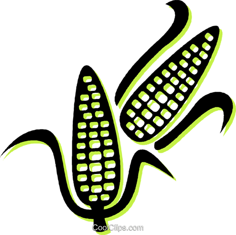 corn on the cob Royalty Free Vector Clip Art illustration vc034875
