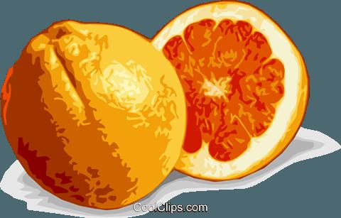 橙 免版税矢量剪贴画插图