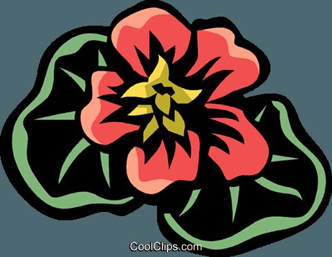 焊菜属的植物 免版税矢量剪贴画插图
