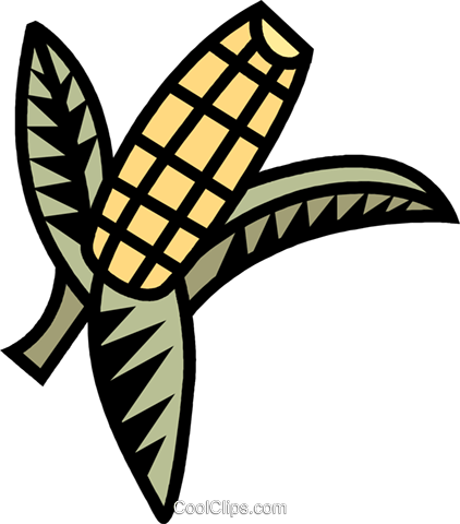 corn Royalty Free Vector Clip Art illustration vc039470