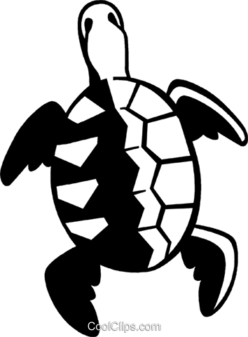 turtle Royalty Free Vector Clip Art illustration vc059980