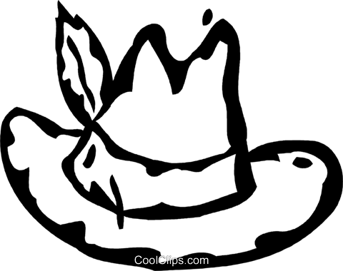 hat with a feather in it Royalty Free Vector Clip Art illustration vc060894