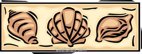 seashells Royalty Free Vector Clip Art illustration vc061656