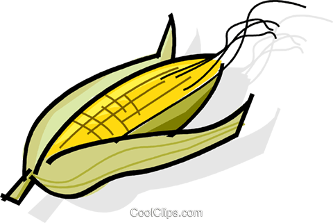 cobs of corn Royalty Free Vector Clip Art illustration vc061758