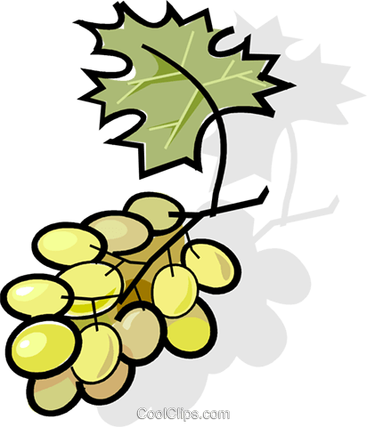 grapes Royalty Free Vector Clip Art illustration vc061790