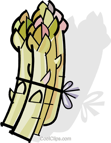 asparagus Royalty Free Vector Clip Art illustration vc061793