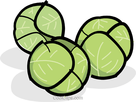Brussels sprouts Royalty Free Vector Clip Art illustration vc061817