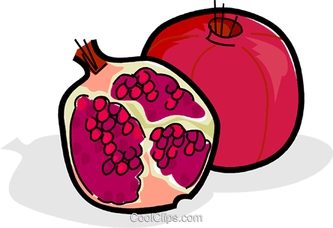 Sliced pomegranate Royalty Free Vector Clip Art illustration vc061834