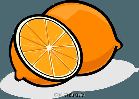 橙子切片 免版税矢量剪贴画插图