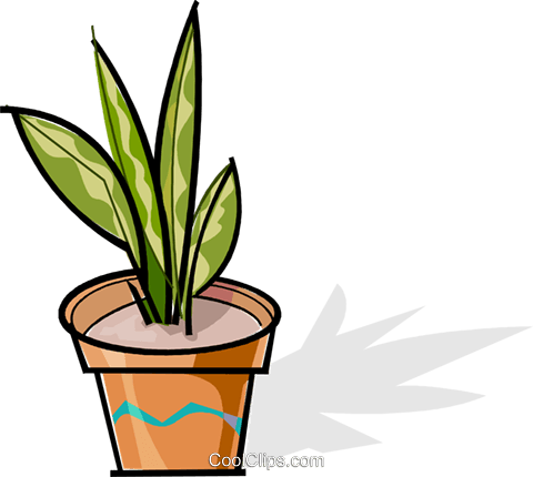 potted plant Royalty Free Vector Clip Art illustration vc061917