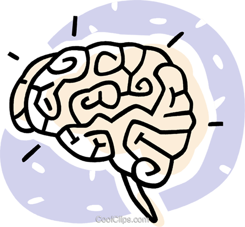 human brains Royalty Free Vector Clip Art illustration vc062012