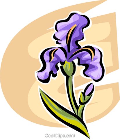 Flowers Royalty Free Vector Clip Art illustration vc062711